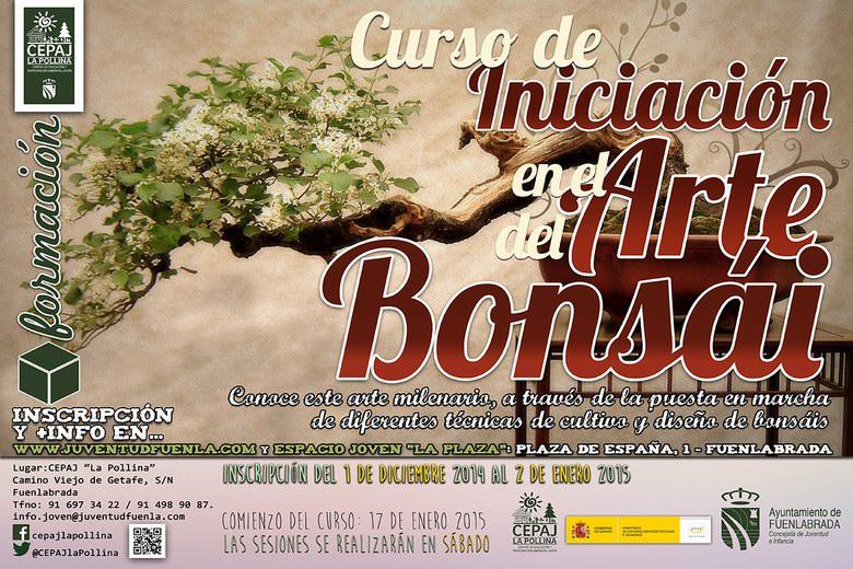 Nuevo curso de iniciación en el arte del bonsai en Fuenlabrada