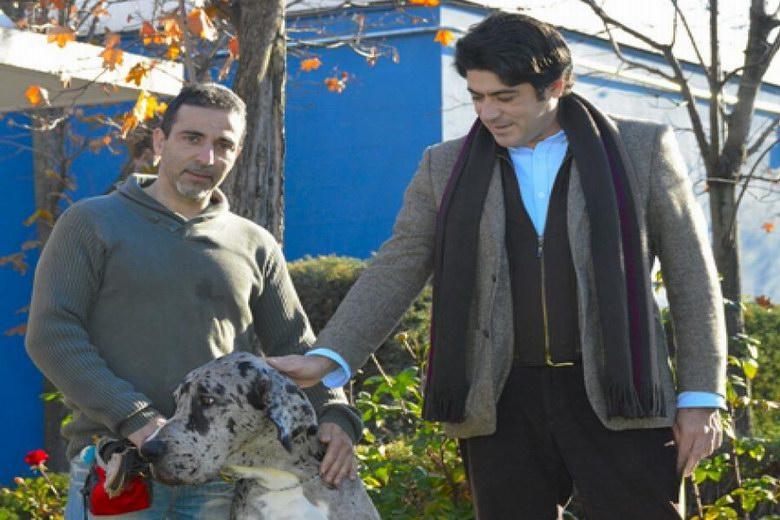 El Centro de Protección Animal de Alcorcón logra que se adopten 834 perros y gatos desde 2011
