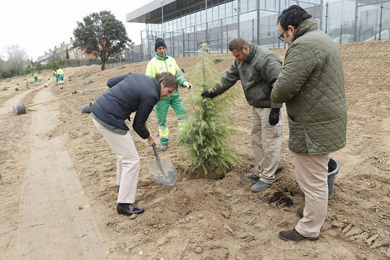 Recuperación y reforestación de terrenos en Boadilla