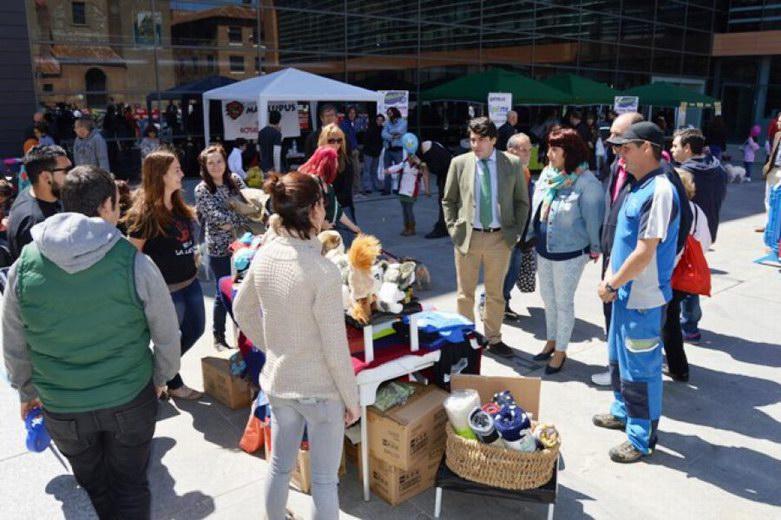 Miles de vecinos en la III Feria de la Adopción de Alcorcón