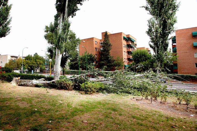 17 intervenciones de urgencia en Alcobendas tras la tormenta del domingo