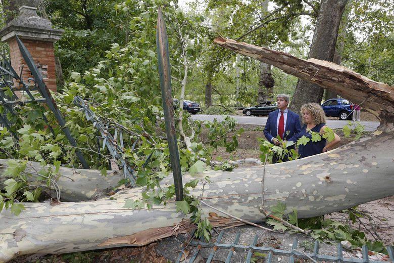 Aranjuez informa de los trámites a seguir en la reclamación de daños por la tormenta del pasado día 30