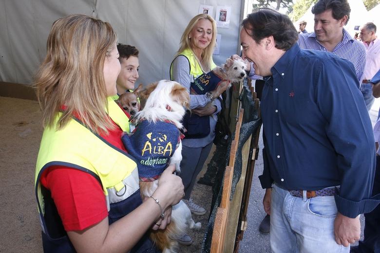 Este otoño vuelve el XII Salón de adopción de animales de compañía al Retiro