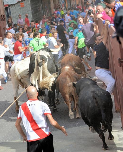 Nueve Contusionados Leves En El Primer Encierro De Las Fiestas De