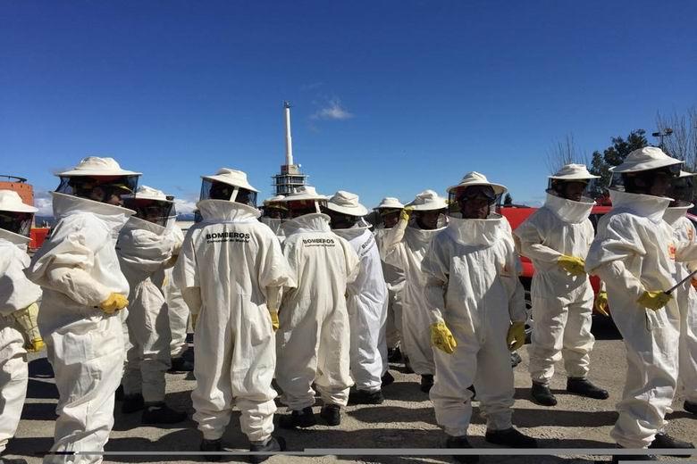 El Cuerpo de Bomberos de la Comunidad de Madrid ha realizado más de 900 intervenciones este año por enjambres de abejas