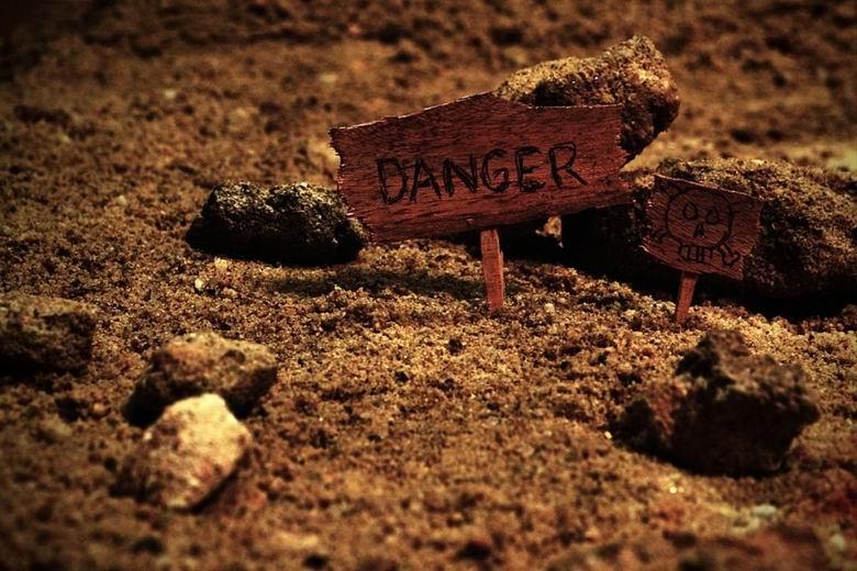 La Comunidad refuerza las medidas para erradicar el uso ilegal de cebos envenenados
