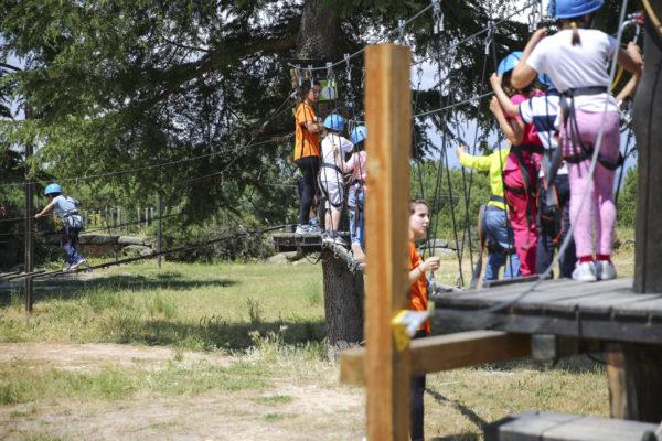 las rozas campamentos verano