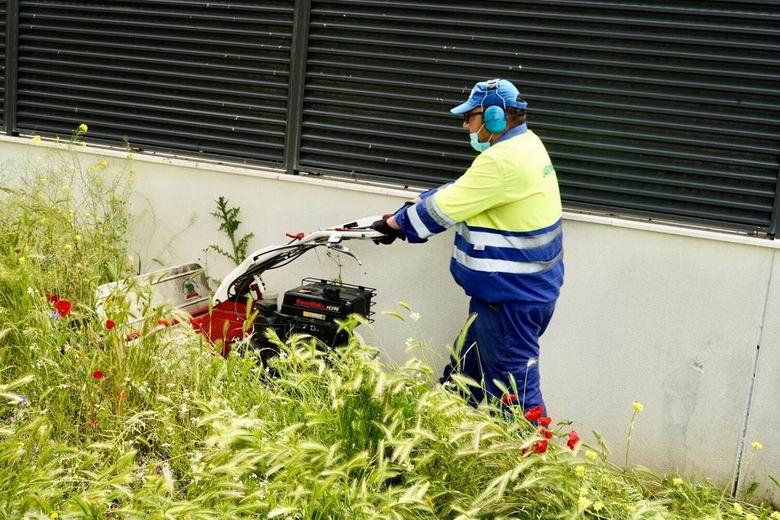 Móstoles intensifica las actuaciones de mantenimiento y limpieza en parques y jardines