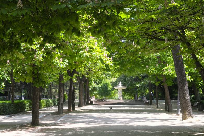 El Retiro y otros ocho parques de Madrid, cerrados por las fuertes rachas de viento y el calor