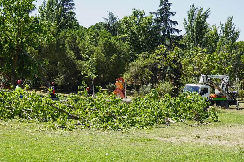Móstoles reabrirá el jueves el parque El Soto
