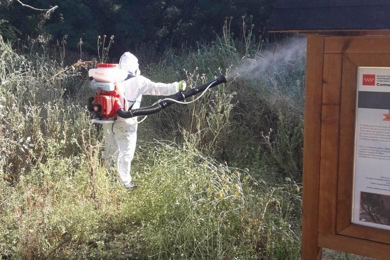 San Fernando de Henares refuerza sus campañas para el control y la prevención de mosquitos y larvas en el municipio