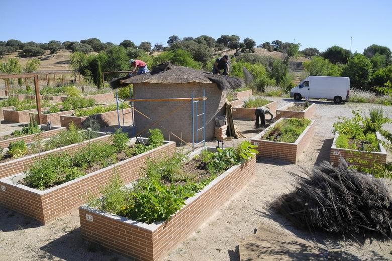 Boadilla realiza actuaciones de mejora en los huertos urbanos