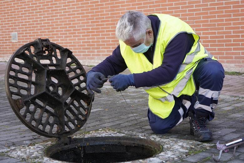 Móstoles pone en marcha su campaña anual de control de plagas en el municipio