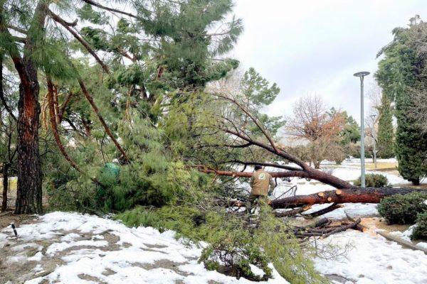 alcobendas zona catastrofica nieve