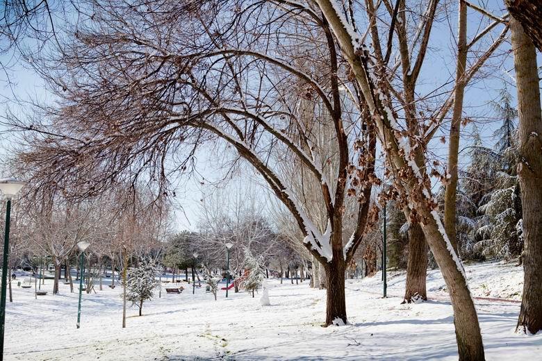 Pozuelo cierra los parques hasta que finalice el temporal