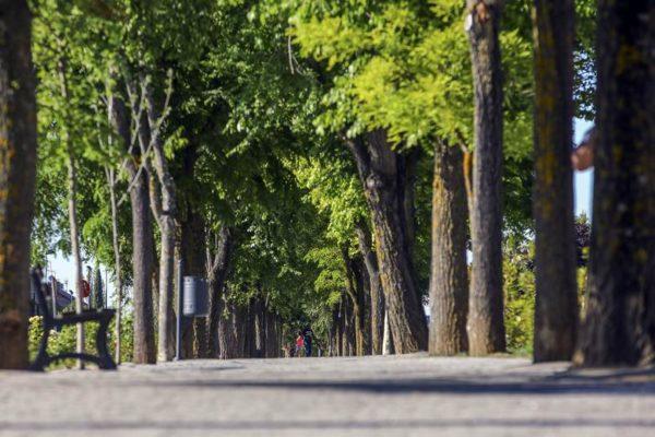 las rozas bulevard sitges premio sostenibilidad
