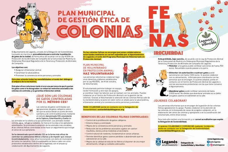 Leganés pone en marcha un Plan Municipal de Gestión Ética de las Colonias Felinas