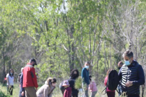Plantación árboles Covibar 03